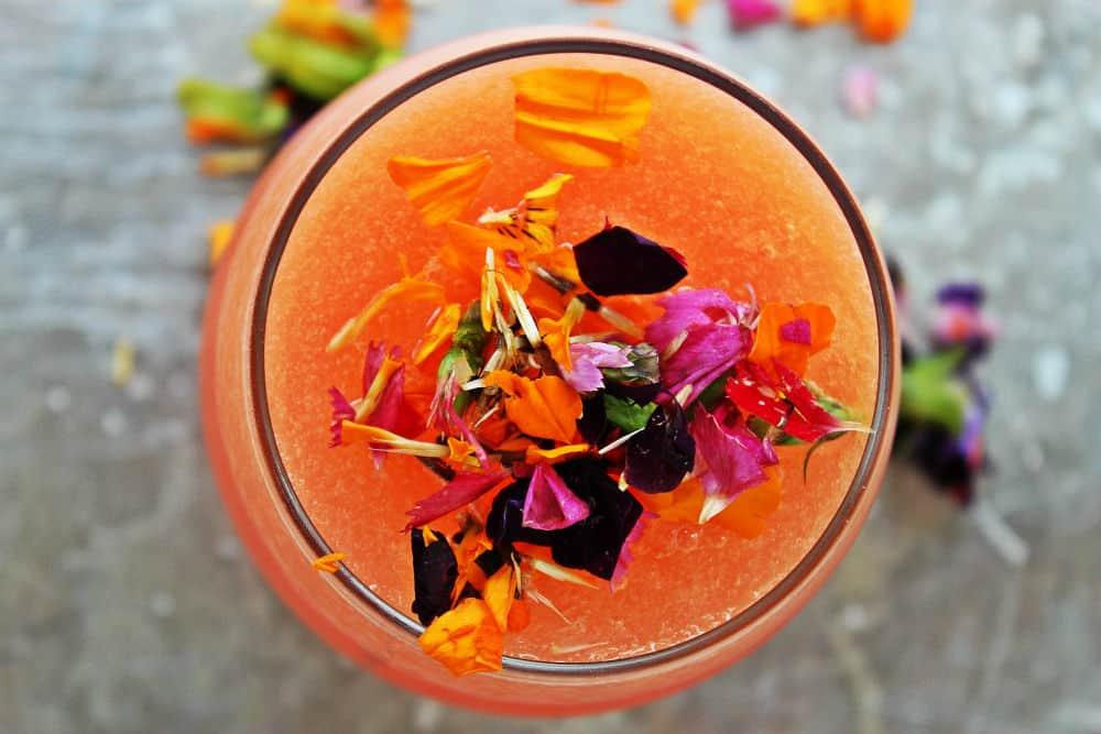 , Flower Margarita